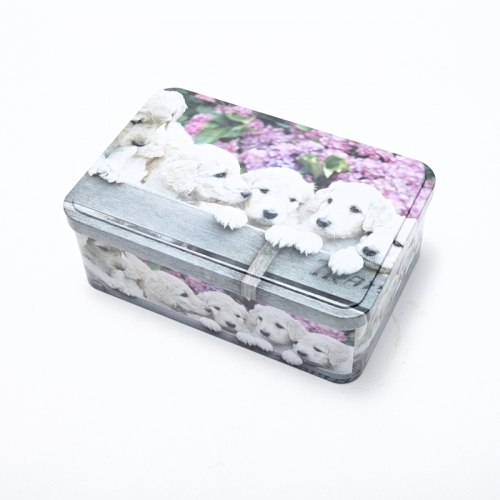 Cookie Storage Tin Box